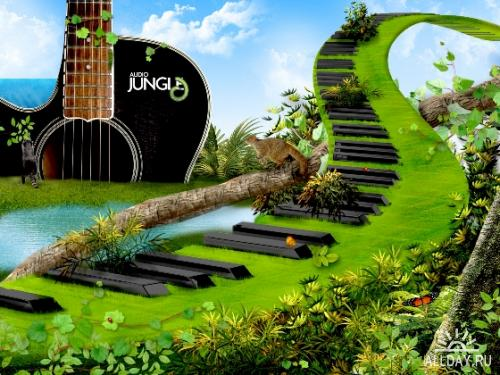 Audio Jungle Wallpapers Pack - обои на рабочий стол