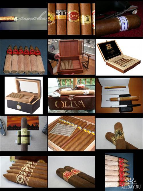 Cigars | Сигары