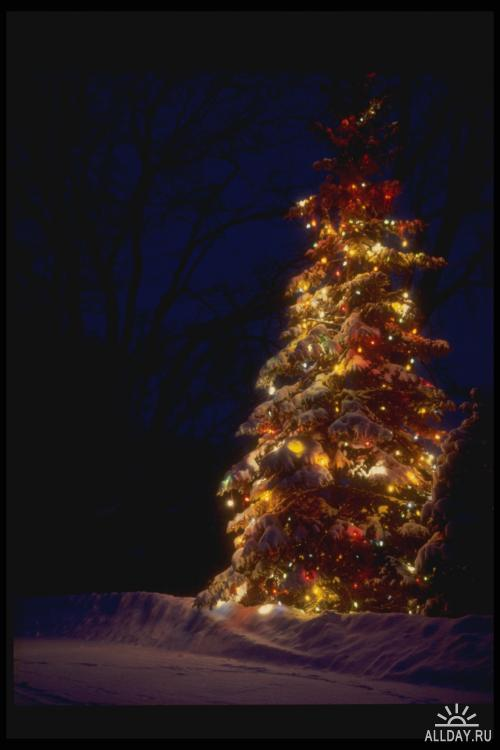 Corel Photo Libraries - COR-072 Christmas