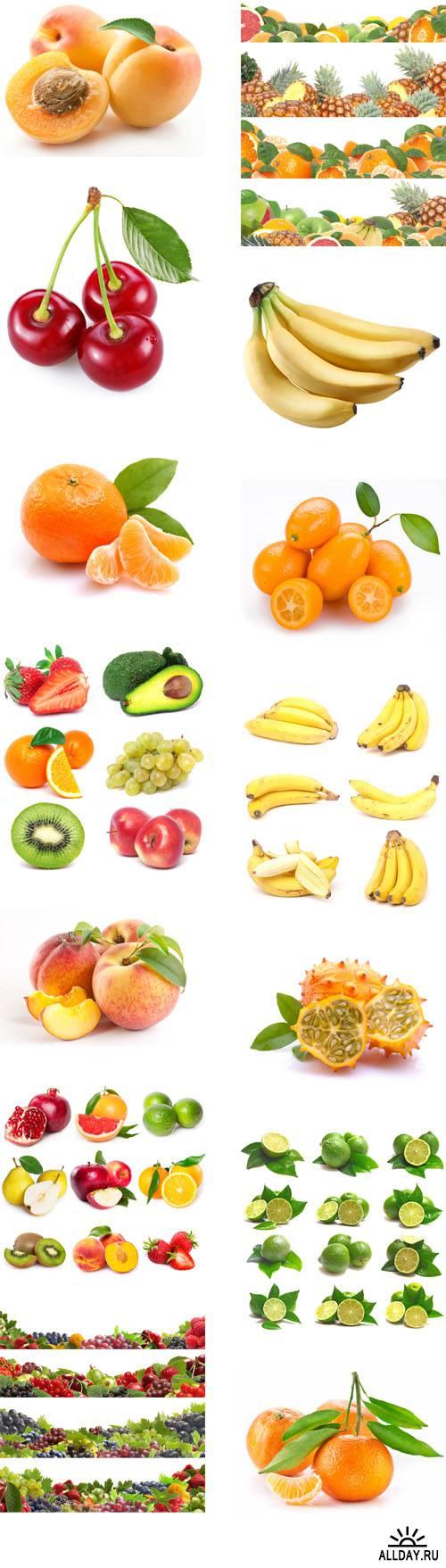 Fresh fruits, vegetables, berries