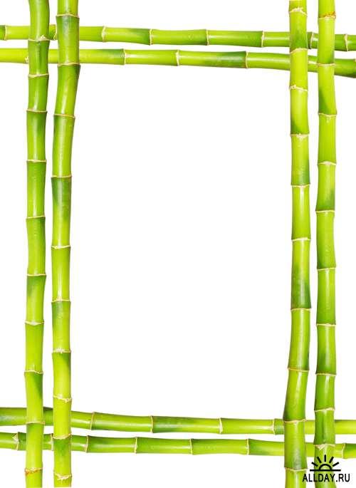 Бамбуковые рамки - Растровый клипарт   Bamboo frame - UHQ Stock Photo