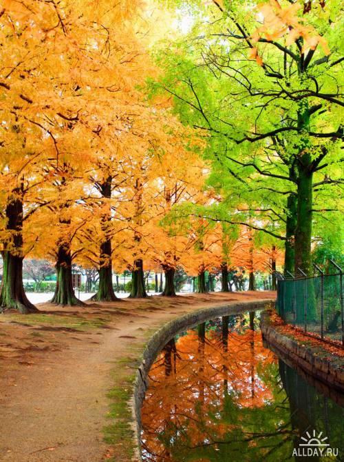 Мир в Фотографии - World In Photo 618
