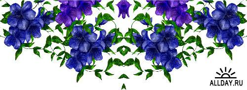 Цветочные бордюры / Flower borders