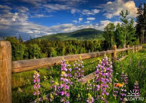 Качественные широкоформатные обои с весенними пейзажами (часть1)