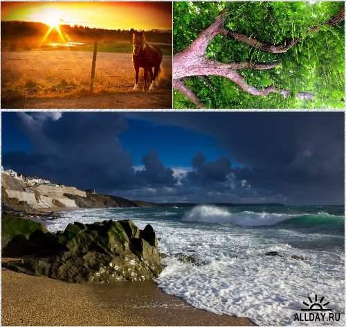 Прекрасные обои - Мир природы