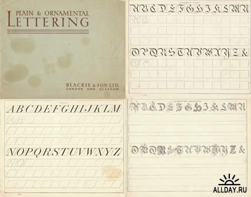 Каллиграфия и леттеринг -  большой сборник книг