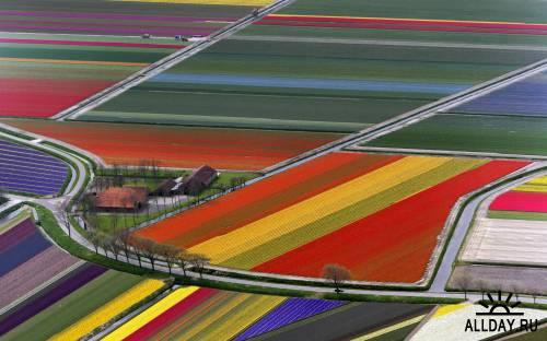 200 Beautiful Natural Scenery HQ Wallpapers