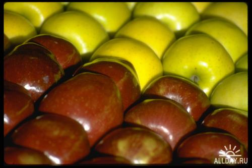 Corel Photo Libraries - COR-025 Food