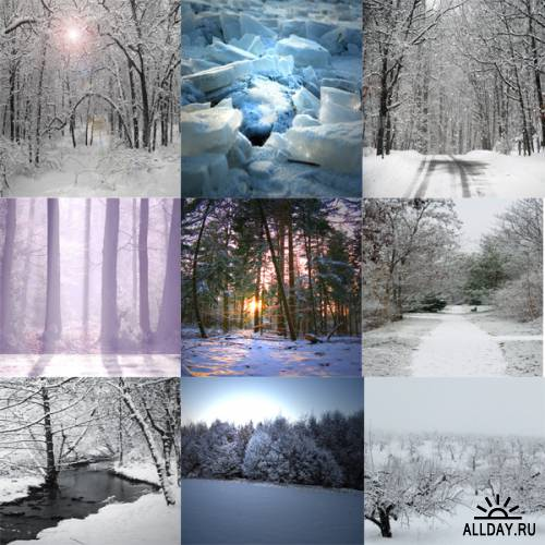 Scrap kit    Wintery  Friends