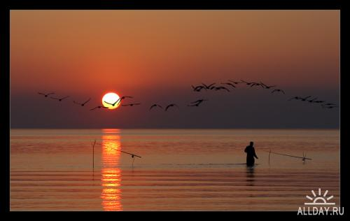 Мир в Фотографии - World In Photo 24