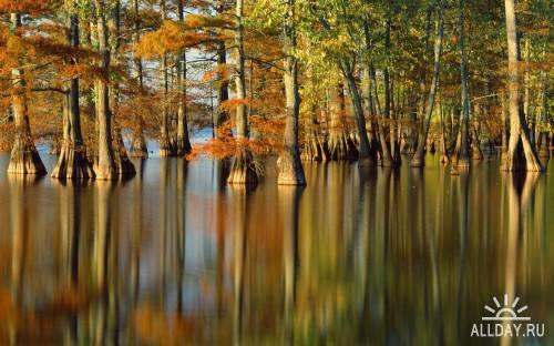 Великолепные красоты природы земли (Часть 10)