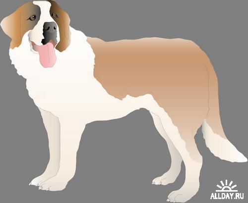 Dogs Vector Собачки векторные png