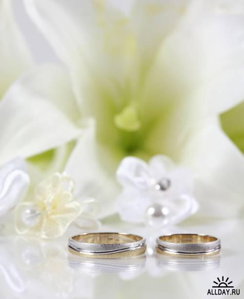 Все для Вашей Свадьбы (Часть 5) - высококачественный клипарт