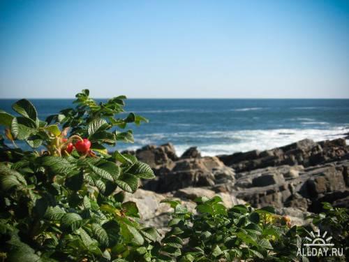 40 Удивительных пейзажей природы (часть 10)