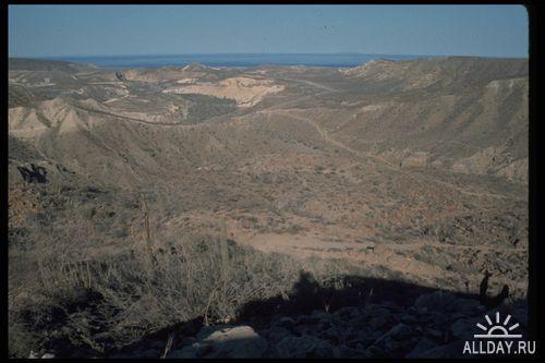 Клипарт - Пустыня
