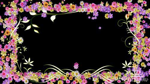 VNkfeMFufc.jpg