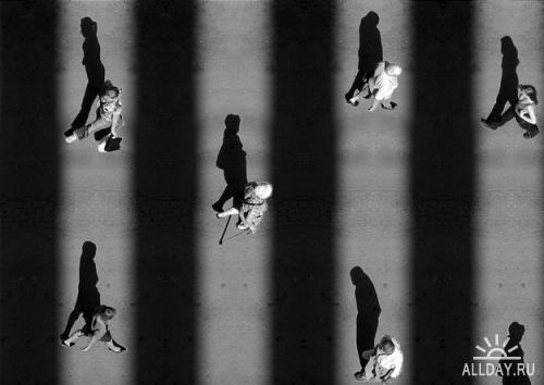 Работы фотографа Алексея Бедного