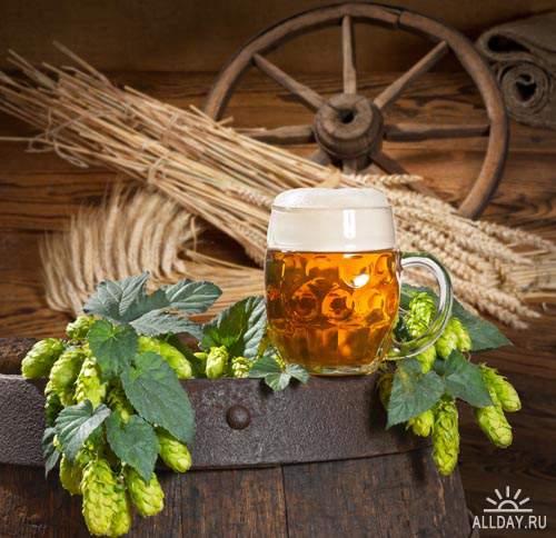 Напитки. Мега коллекция. Пиво #2 - Растровый клипарт