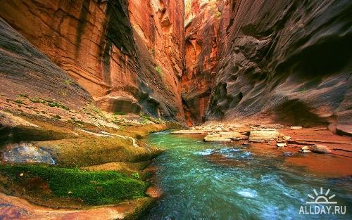 Beautiful Nature Wallpapers (8)