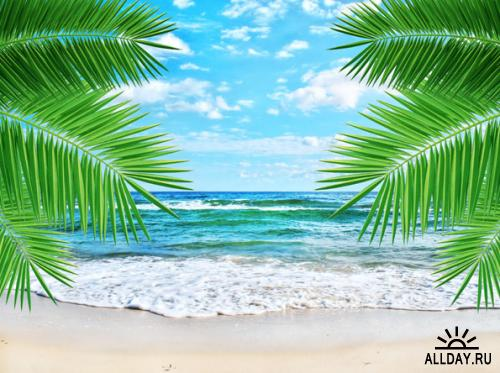 Tropical paradise images