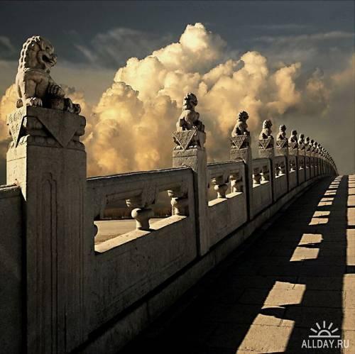 Мир в Фотографии - World In Photo 442