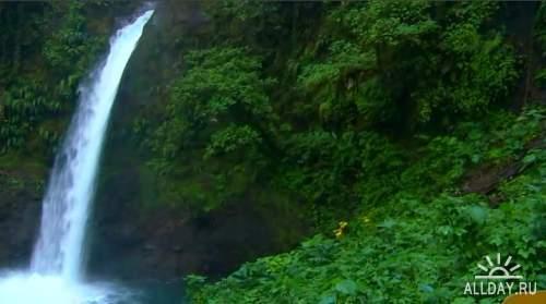 Природа в сопровождении шедевров классической музыки / Nature's Colors with the World's Greatest Music - DVDRip / DVD5