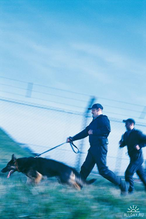 Photostock - Police, Security, Prison