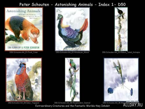 Иллюстрации Питера Схоутена (Peter Schouten).