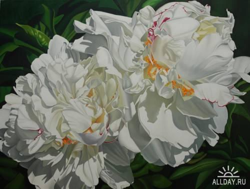 Artworks by Suzy Smith