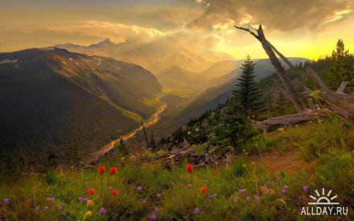 75 Unbelievable Mixed Color HQ Best Wallpapers
