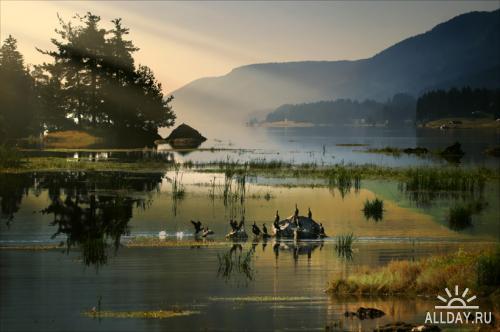 Мир в Фотографии - World In Photo 293