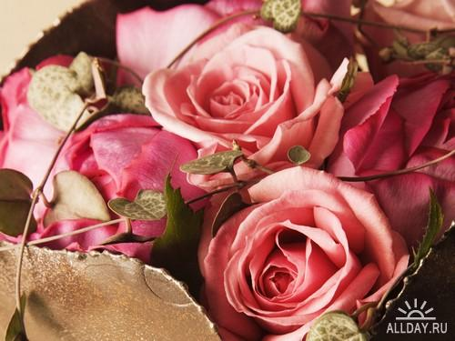 Flowers Wallpapers (5)