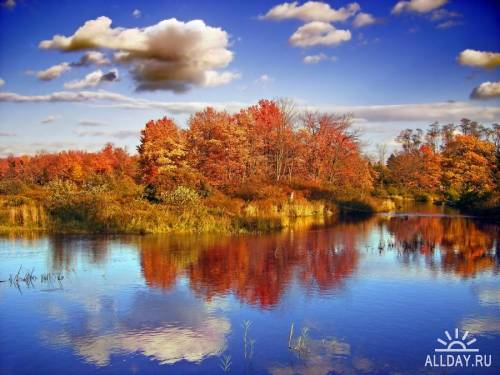 Мир в Фотографии - World In Photo 399