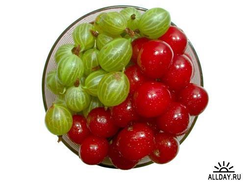 Cherry - stock photos   Вишня