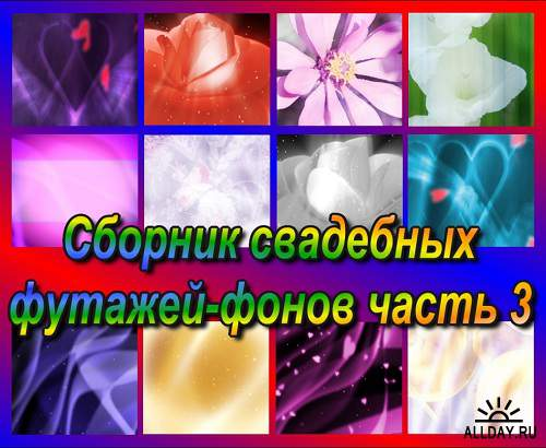 fBWkW9oeiY.jpg