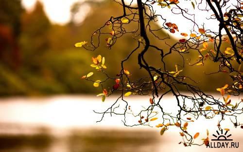 Обои - Завораживающие красоты природы (Часть 4)