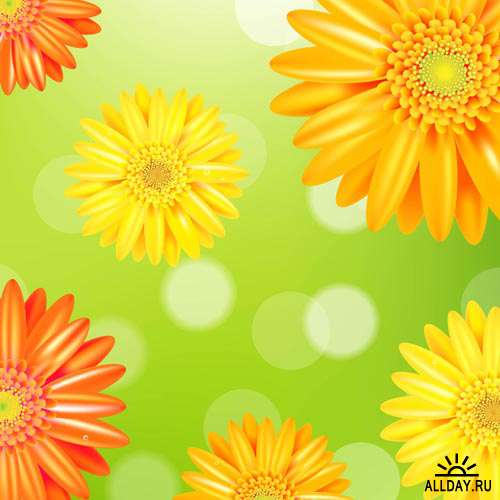 Цветы в векторе #53 - Векторный клипарт