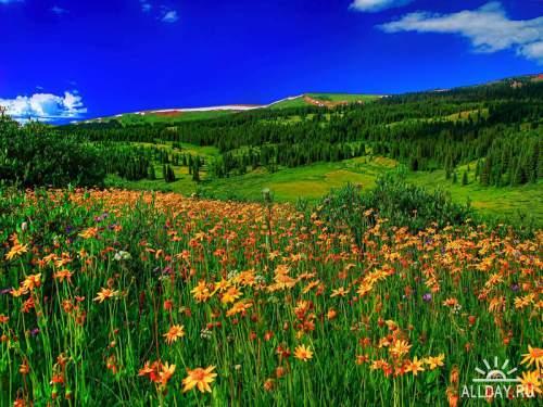 Beautiful Nature Wallpapers 34
