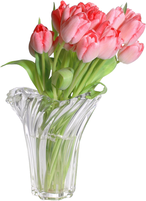 Tulips Vases Тюльпаны в вазах png