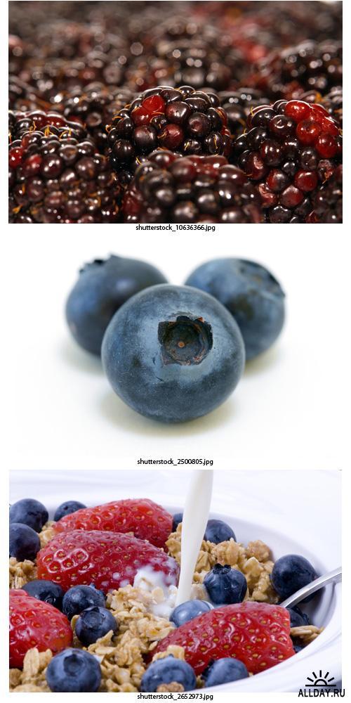 Amazing SS - Bilberry & Blackberry | Черника & Ежевика
