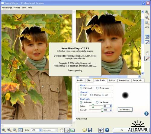 PictureCode Noise Ninja 2.3.5 for Adobe Photoshop (32 & 64-bit)