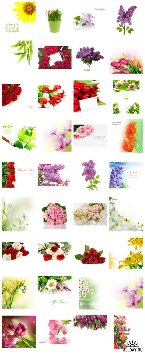 Super flower cards collection. All my posts