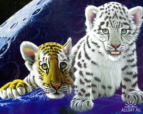 Широкоформатные обои с изображением тигров