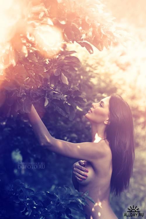 Фотограф Dmitrii Grechin
