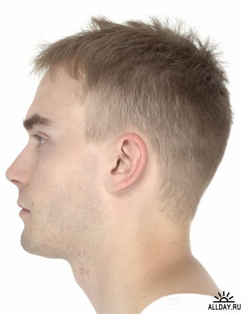 Референсы мужские головы