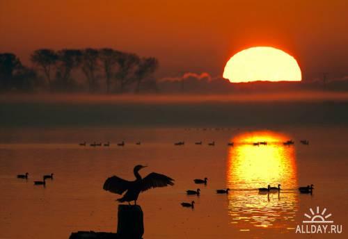 Мир в Фотографии - World In Photo 484