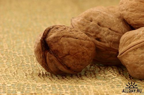 Nuts - Орехи