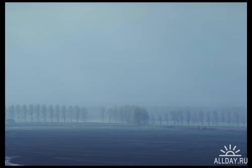 Summer Fog