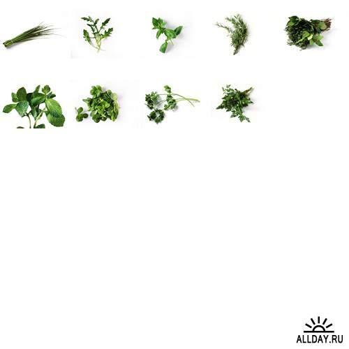PhotoAlto - PA-089 Vegetables