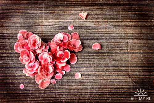 Любовь: концепция 3 - Растровый клипарт | Love concept 3 - UHQ Stock Photo